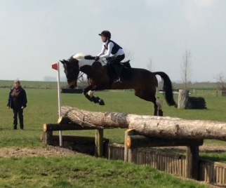 Tabby and Barney X-Country training / Massey Equestrian International