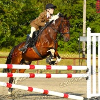 Tabby&Barney competing at Codham Park