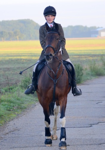 Tabby on a Hunt / Massey Equestrian International