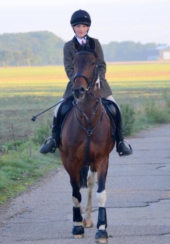 Tabby on a Hunt / Massey Equestrian International