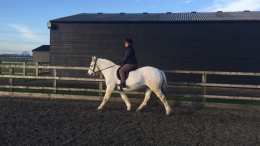 Claire & Gemma flat lesson with Robert Massey