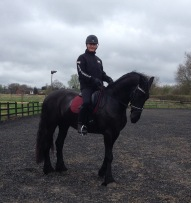 Lukas - 5 year old Friesian owned by Irum Walker