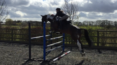 Tabby & Barney Jumping lesson