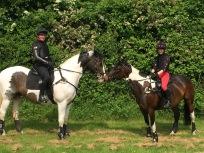 Gamble und Barney / Massey Equestrian International