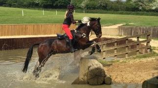 Tabby & Barney / Massey Equestrian International