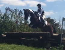 Tabby and Barney / Massey Equestrian International