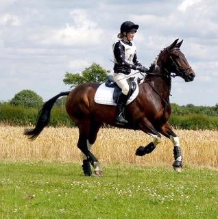 Tabby and Barney / Massey Equestrian International