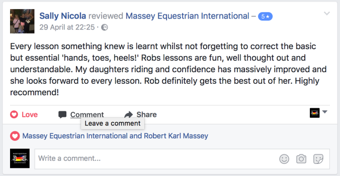 Review Massey Equestrian International 8.png