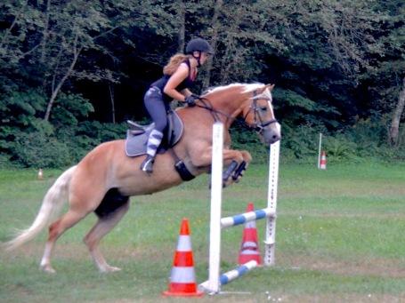 Massey Equestrian InternationalMassey Equestrian International
