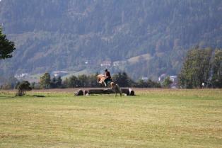 Massey Equestrian International