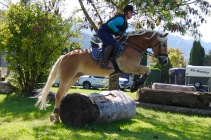 Massey Equestrian International