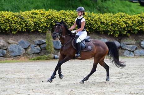 Sophia Pregnolato auf Australia / Massey Equestrian International