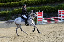 Laura Rinnhofer auf Holly / Massey Equestrian International