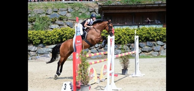 Dina Mercedes Bernthaler auf Joy / Massey Equestrian International