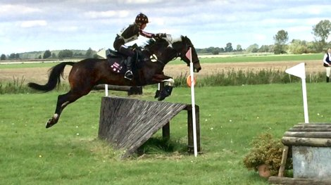 Tabby Massey - Massey Equestrian International